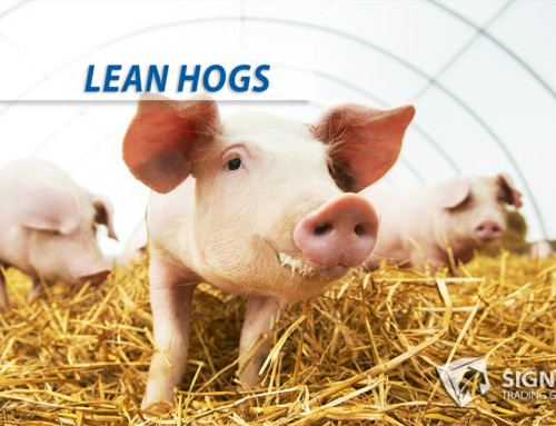 Lean Hogs Long Profits